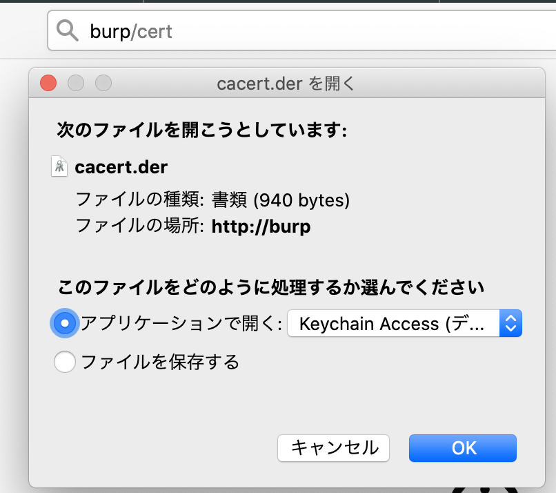 burp cert download